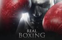 realboxing.jpg