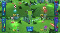 Fluster Cluck - Four Players Alpine Stage.jpg
